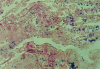 Brown and Brenn Stain for Bacteria -- k004