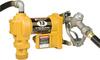 12V Fuel Pump with Auto Nozzle -- 2460071 - Image