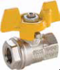 Metric Ball Valves Series BVGC -- BVGTC BSPP Female/Female Valve with Compact Handle