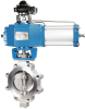 BW Lugged Type Butterfly Valve