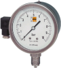 DZF26 - SS Pressure Gauge w/ Analog Output