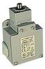 Limit Switch SS plunger & (3) PG13.5 entries, 1 N.O. / 1 N.C. -- ABM5E11Z11