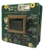 Embedded Vision Board with CMV8000 8MP CMOSIS Image Sensor -- MityCAM-C8000 Board Set - Image