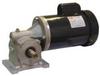 AC Gearmotor,RPM 100, 60 Hz -- 4CVZ6