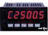 Panel Meter, Dual Rate Totalizer, 0.56