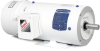 Definite Purpose AC Motors -- CEWDBM3546