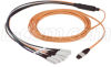 MPO Male-SC 12 Fiber Ribbon Fanout 62.5 Multimode with OFNR Jacket, 10.0m -- MTPM12-SC-10