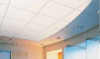 Gypsom and Fiber Ceiling Panels -- Performa®