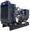 Perkins Diesel Generator 100 kW