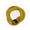 Circular Cable Assemblies -- WM23848-ND -Image