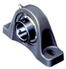 VPS Series Cast Iron 2-Bolt Ball Bearing Pillow Block -- VPS-116