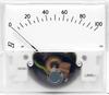 Presentor - Industrial Series Analogue Meter -- R19W - Image