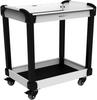 MultiTek Cart -- RV-NH3300N001 -Image