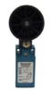 Global Limit Switches Series GLL: Side Rotary, Fixed Length Lever with 50mm rubber roller, 2NC Direct Opening Slow Action, 20 mm conduit -- GLLC06A1Y