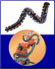 Robotrax Series Cable Carriers