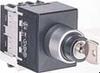 Cam Switch -- NY11AC1C1 - Image