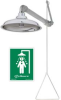Corrosion-Resistant SS Horizontal Supply Drench Shower -- T9HB549126 - Image