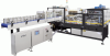 Intermittent Motion Wrap-Around Tray Packer/Case Packer -- DPM-2000 - Image