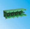 Pluggable Terminal Blocks -- PTB750S-06