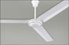 IND-WH Fans-Ceiling Fans -- 494271