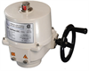 Quarter-Turn Electric Actuator -- P5 Series