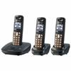 Panasonic KX-TG6413 DECT 6.0 Expandable Cordless Telephone w -- KX-TG6413