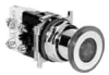 Illuminated Push-Pull Switch -- 10250T1080C48-1R2 - Image