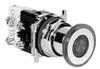 Illuminated Push-Pull Switch Operator -- 10250T480