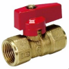 Two Piece Body Gas Ball Valve - F X F NPT -- 461
