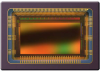 Image Sensors, Camera -- CMV2000-2E5M1PP-ND