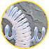 Coiltef™ -- Model 3600072 - Image