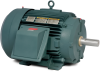 Severe Duty AC Motors -- OF4312T