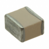 Ceramic Capacitors -- 100C272JT300XT-ND - Image