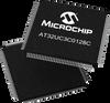 Microcontrollers, USB -- AT32UC3C0128C