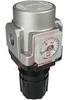 Regulator; Modular; 1/2NPT ports; panelmount; square gauge in imperial units -- 70070499