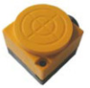 Inductive Proximity Switch -- PIA-F50-012
