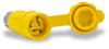 15A Electrical Connector w/cap: watertight, locking, NEMA L5-15 -- 25W47BRY - Image