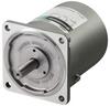 Induction Motor -- 5IK100VA-ES - Image