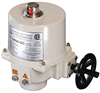 Quarter-Turn Electric Actuator -- P2 Series -- View Larger Image