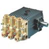 Triplex Plunger Pump -- CW61 -Image