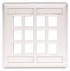 Datacommunication Face Plate -- IFP212W - Image