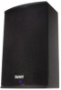 Point Source, Constant Directivity SuperDual™ Loudspeaker -- VNET300