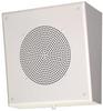 Slant Front Surface Mounted Speaker -- 49940