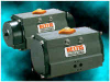 Bettis Model RPC-Series -- Model RPC 250 - Image
