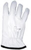 Goat Skin Leather Protector Glove, 10