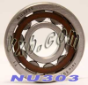 NU303 Cylindrical Roller Bearing 17x47x14 -- Kit8696