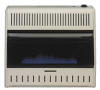 Convection Vent Free Heater,30K BTU,Blue -- 4TGX9