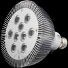15W Day White 45° LED PAR 38 -- 180026