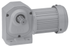 Mid Series Rt-angle Foot Mount Gear Motor Type H2 -- H2L22T020-BBK5A
