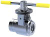Accuseal® Steam Powered Valves (SPV ) -- Pressure Class 600-4500 - Image
